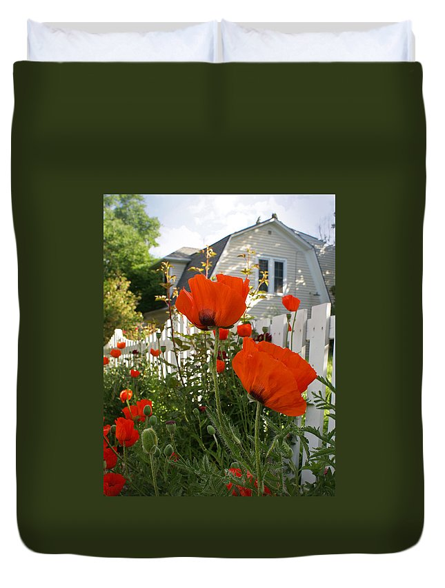 Poppies Duvet Cover featuring the photograph Oriental Poppies by Heather Coen