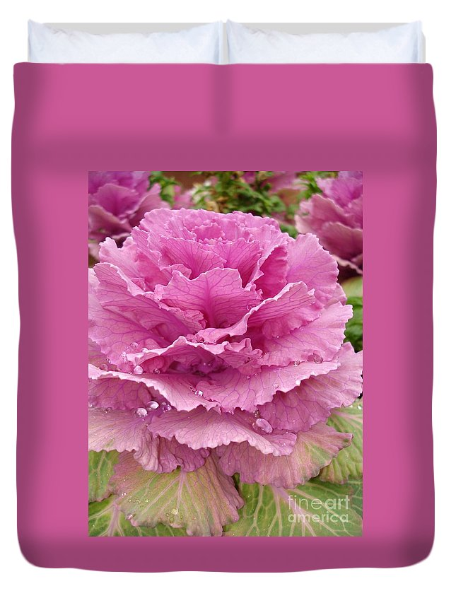 Ornamental Cabbage Duvet Cover featuring the photograph Ornamental Cabbage by Carol Groenen