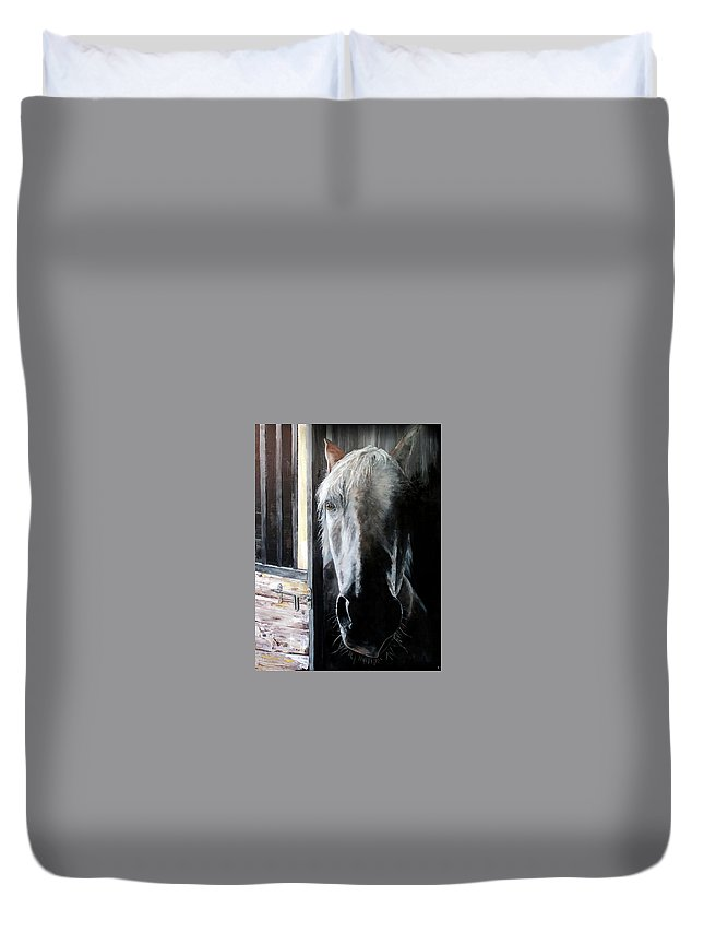 Equine Art Duvet Cover featuring the painting Osada by Becky Brooks