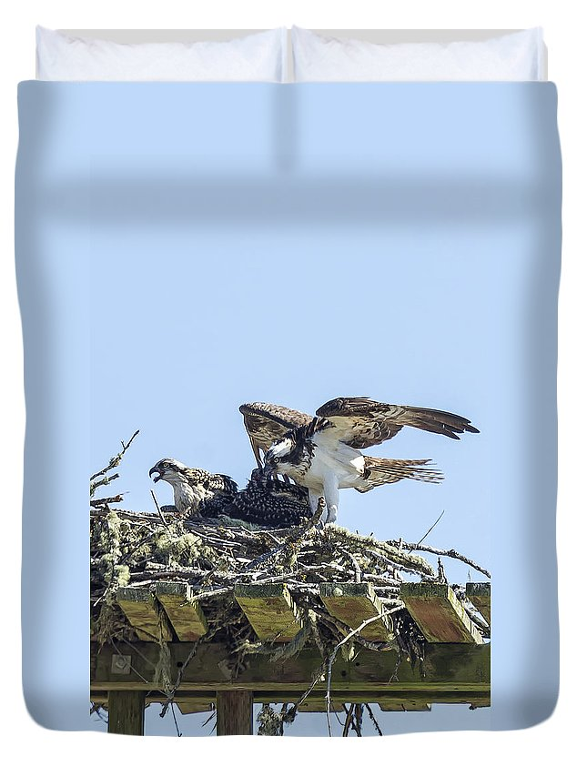 Osprey Duvet Cover featuring the photograph Osprey Family Portrait No. 1 by Belinda Greb
