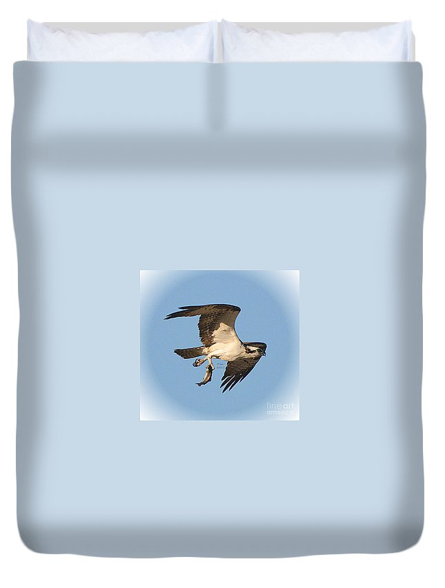 Osprey Duvet Cover featuring the photograph Osprey Natures Way Ll by Rennae Christman