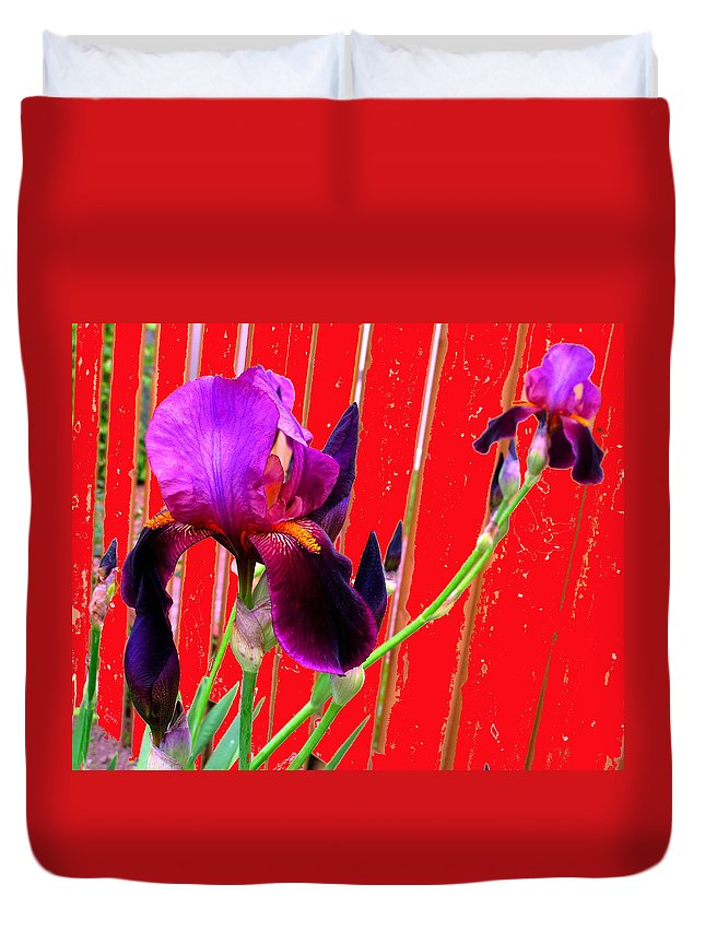 Iris Duvet Cover featuring the photograph Other Side Of The Fence by Ian MacDonald
