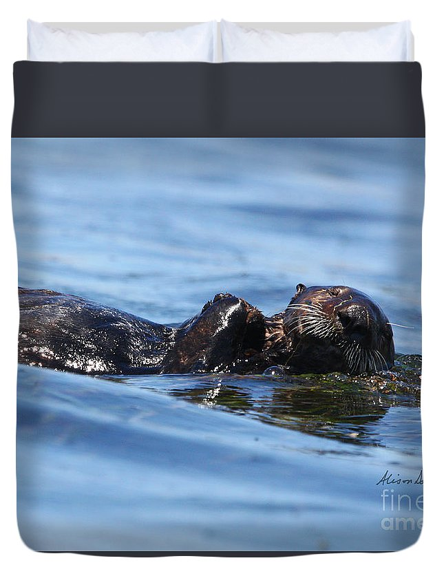 Otter Duvet Cover featuring the photograph Otter Bliss by Alison Salome