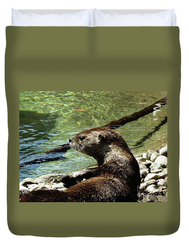 Otter Duvet Cover featuring the photograph Otter by September Stone