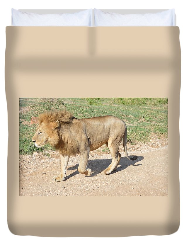#wildlife #africa_lions #big_cats #bigcats #animals #lionesses Duvet Cover featuring the photograph Out For A Stroll by Sally Jones
