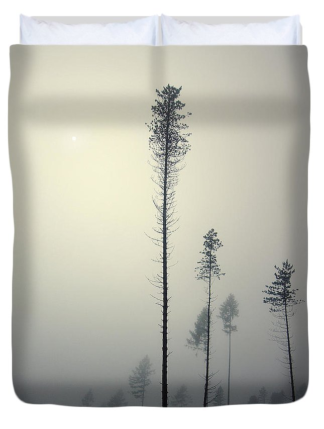 Mist Duvet Cover featuring the photograph Out of the Gray Ashes by Michal Karcz