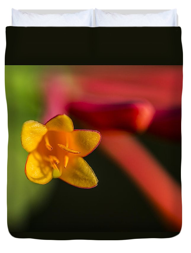 Flower Duvet Cover featuring the photograph Out There by Andrea Kappler