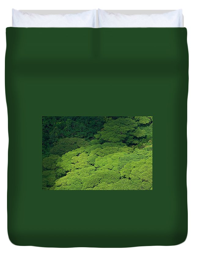 Birds Eye View Duvet Cover featuring the photograph Over The Treetops by Max Steinwald