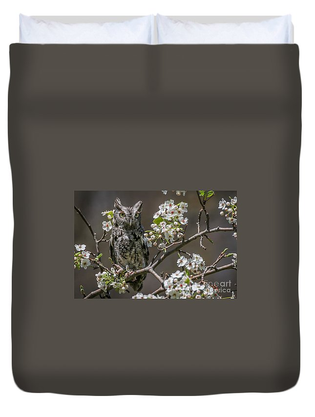 Owl Duvet Cover featuring the photograph Owl Among The Blossoms by Susan Grube