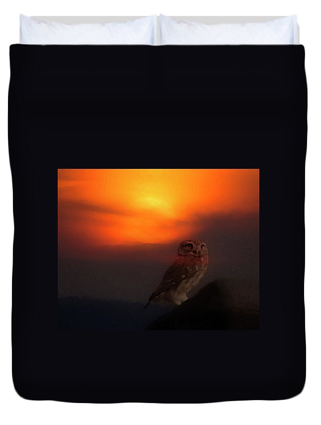 Owl Duvet Cover featuring the photograph Owl At Sunset by Cliff Norton