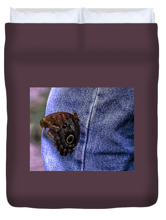 Owl Butterfly On Jeans Duvet Cover featuring the photograph Owl Butterfly On Jeans by Sally Weigand