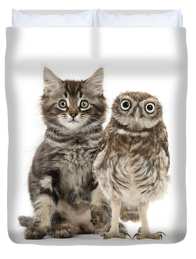 Little Owl Duvet Cover featuring the photograph Owling And Yowling by Warren Photographic