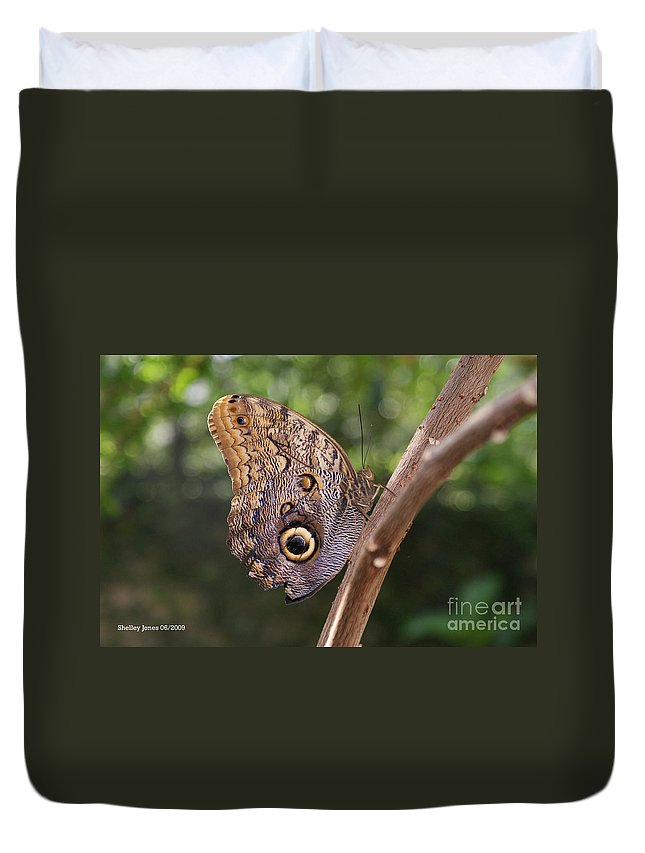 Butterfly Duvet Cover featuring the photograph Owls Don't Always Have Feathers by Shelley Jones