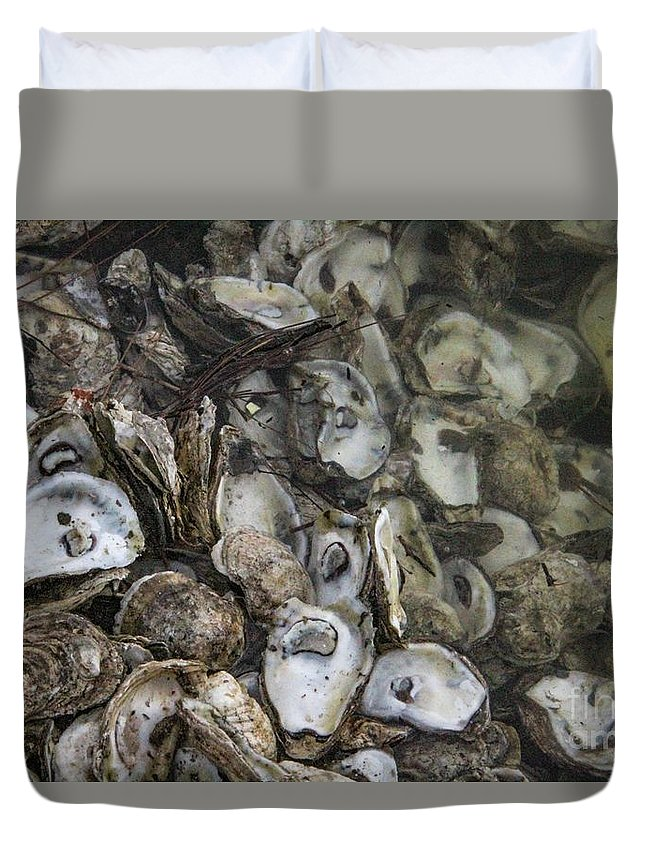 Oysters Duvet Cover featuring the photograph Oysters Four by Steven Munger