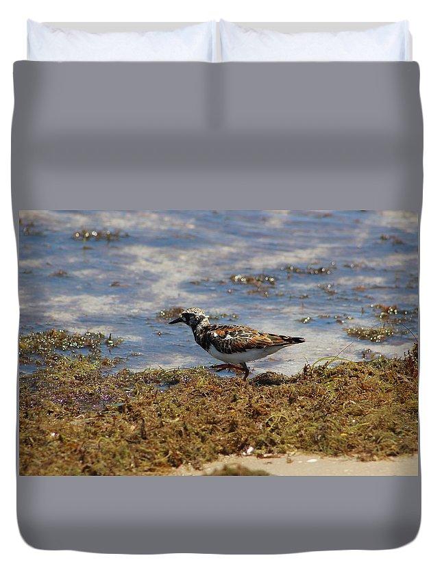 Padre Island National Seashore Duvet Cover featuring the photograph Padre Island National Park by Linda Anderson