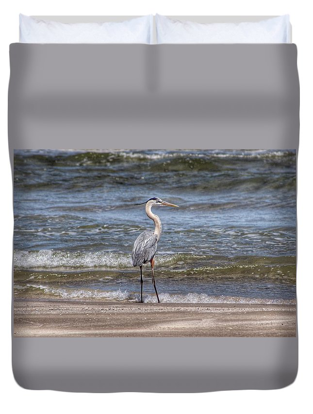 Padre Island National Seashore Duvet Cover featuring the photograph Padre Island National Seashore by Linda Anderson
