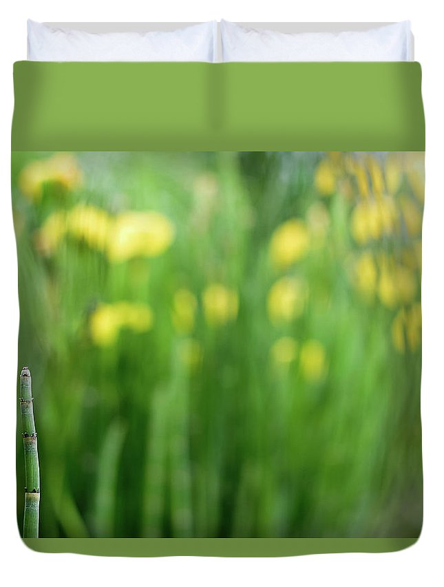 Flower Duvet Cover featuring the photograph Pagoda Garden by MotionOne Studios