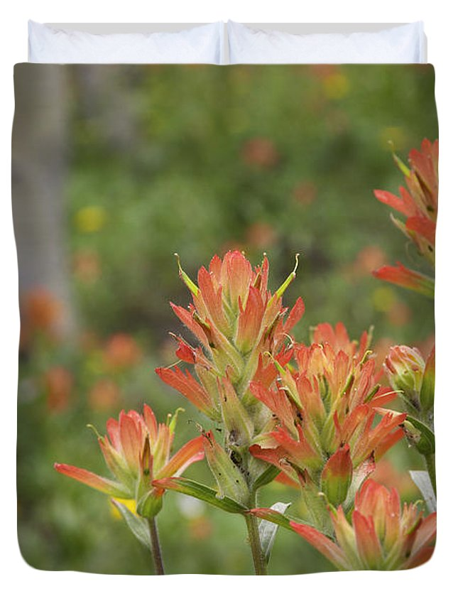 Beautiful Duvet Cover featuring the photograph Paint Brush Summer by Harold Stinnette