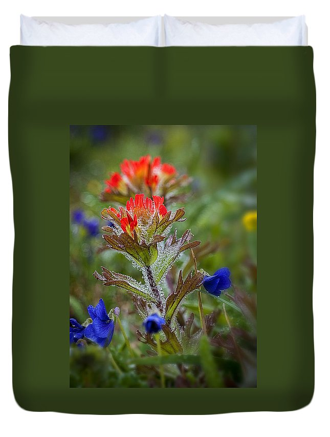 Wet Duvet Cover featuring the photograph Paintbrush In The Mist by Robert Potts