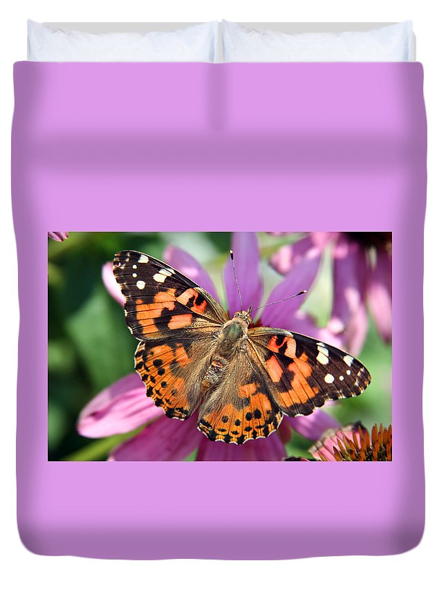 Painted Lady Duvet Cover featuring the photograph Painted Lady Butterfly by Margie Wildblood