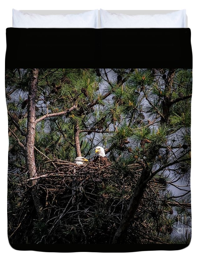 Pair Of Bald Eagle In Nest Duvet Cover featuring the photograph Pair Of Bald Eagles In Nest by Warrena J Barnerd