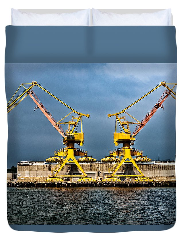 Cranes Duvet Cover featuring the photograph Pair Of Cranes by Christopher Holmes