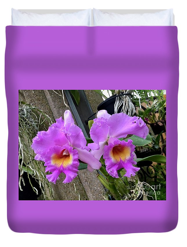 Art Duvet Cover featuring the photograph Pretty Purple Orchids by Jeannie Rhode