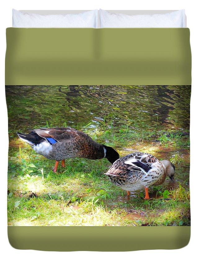 Beak Duvet Cover featuring the painting Pair Of Mallard Duck 7 by Jeelan Clark