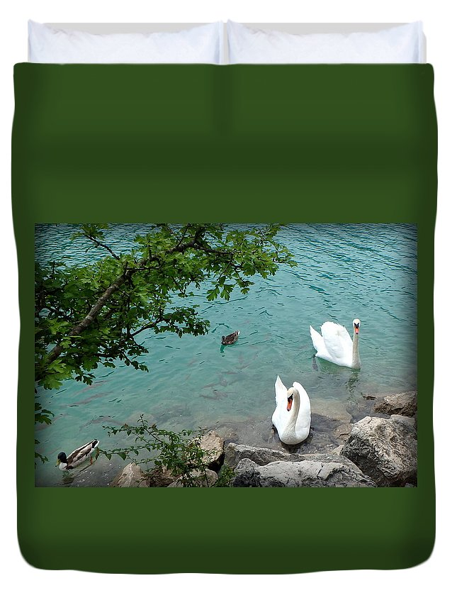 Swans Duvet Cover featuring the photograph Pairs Of A Feather by Lynn Griffin