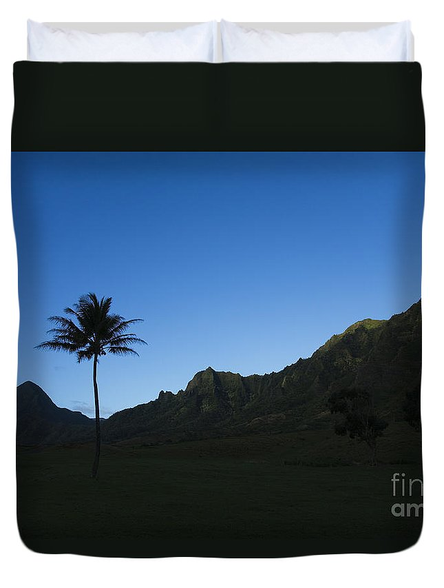 Bright Duvet Cover featuring the photograph Palm And Blue Sky by Dana Edmunds - Printscapes