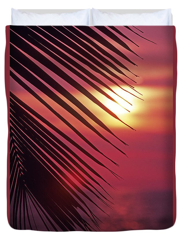 Beautiful Duvet Cover featuring the photograph Palm At Sunset by Carl Shaneff - Printscapes
