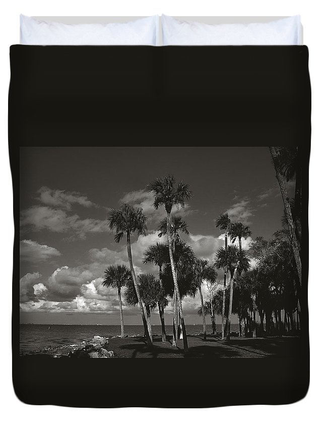 Palm Group Duvet Cover featuring the photograph Palm Group In Florida Bw by Susanne Van Hulst