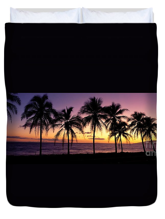 B1538 Duvet Cover featuring the photograph Palm Horizons by Bill Schildge - Printscapes
