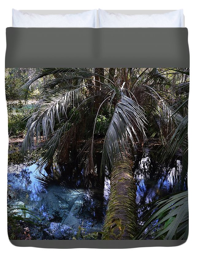 Palm Over A Boil Duvet Cover featuring the photograph Palm Over A Boil by Warren Thompson