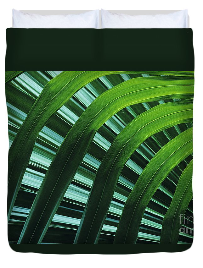 Beautiful Duvet Cover featuring the photograph Palm Patterns by Greg Vaughn - Printscapes