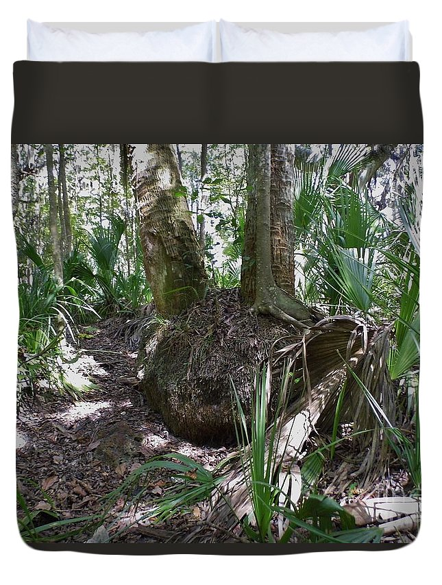 Roots Duvet Cover featuring the photograph Palm Roots by D Hackett
