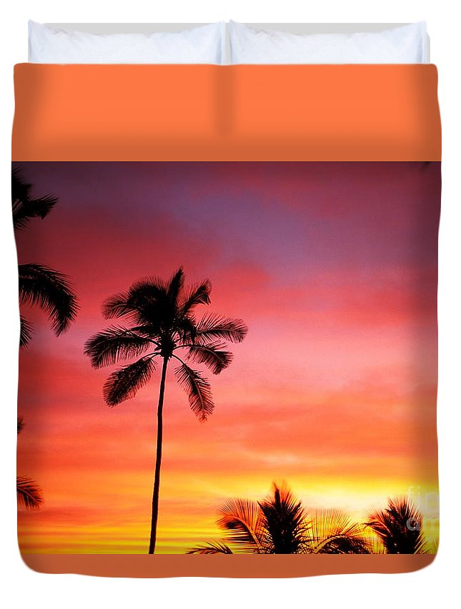 Air Art Duvet Cover featuring the photograph Palm Silhouettes by Dana Edmunds - Printscapes