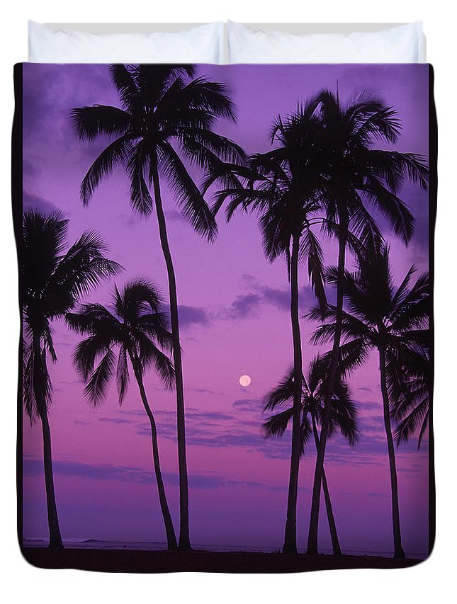 Bright Duvet Cover featuring the photograph Palm Tree And Moon by Ron Dahlquist - Printscapes