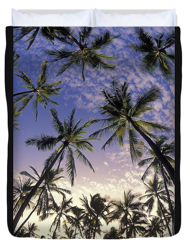 Afternoon Duvet Cover featuring the photograph Palm Tree Grove by Greg Vaughn - Printscapes