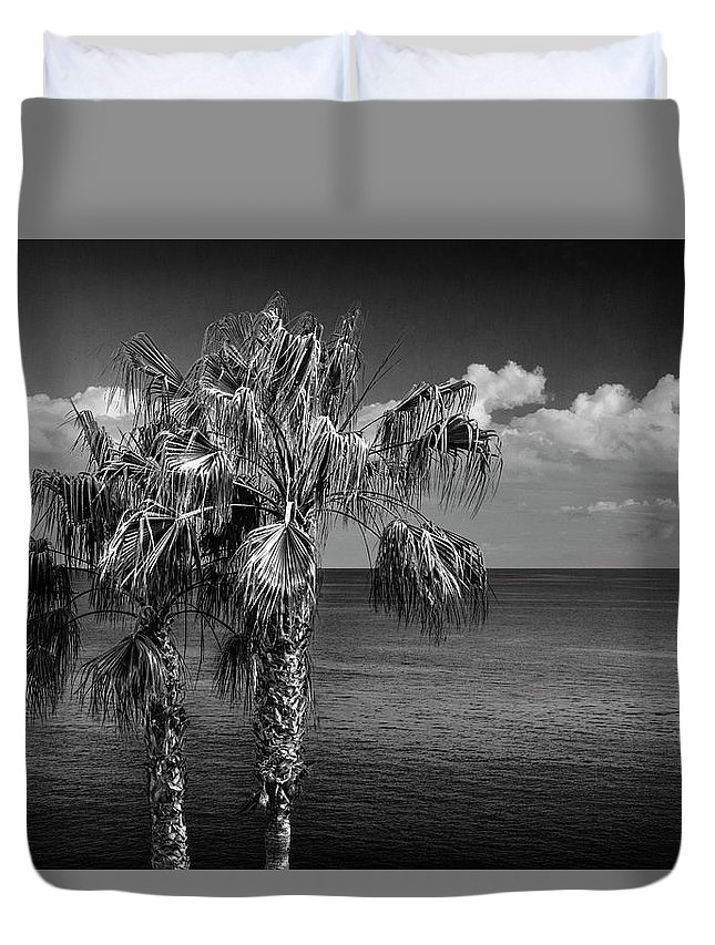 Tree Duvet Cover featuring the photograph Palm Trees In Black And White At Laguna Beach by Randall Nyhof