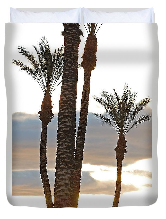 Photo Duvet Cover featuring the photograph Palms And Light by Jean Booth