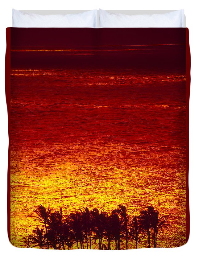 Bright Duvet Cover featuring the photograph Palms And Reflections by Ron Dahlquist - Printscapes