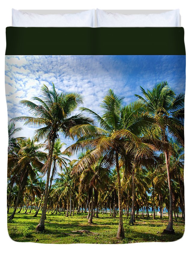 Palms Duvet Cover featuring the photograph Palms And Sky by Galeria Trompiz