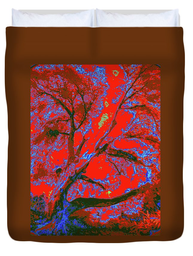 Nature Duvet Cover featuring the photograph Pams Tree Aura by Gary Bartoloni