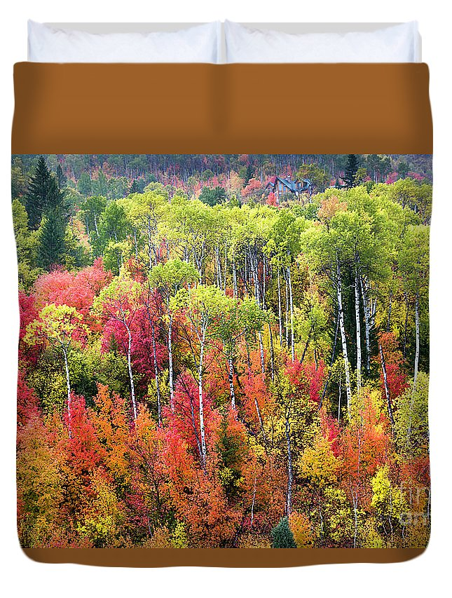 A Panoply Of Autumn Color In Swan Valley Idaho. It Is A Rare Autumn When The Aspens Turn Yellow While The Mountain Maples Are Still Glowing Red. Duvet Cover featuring the photograph Panoply Of Autumn Color by Daryl L Hunter