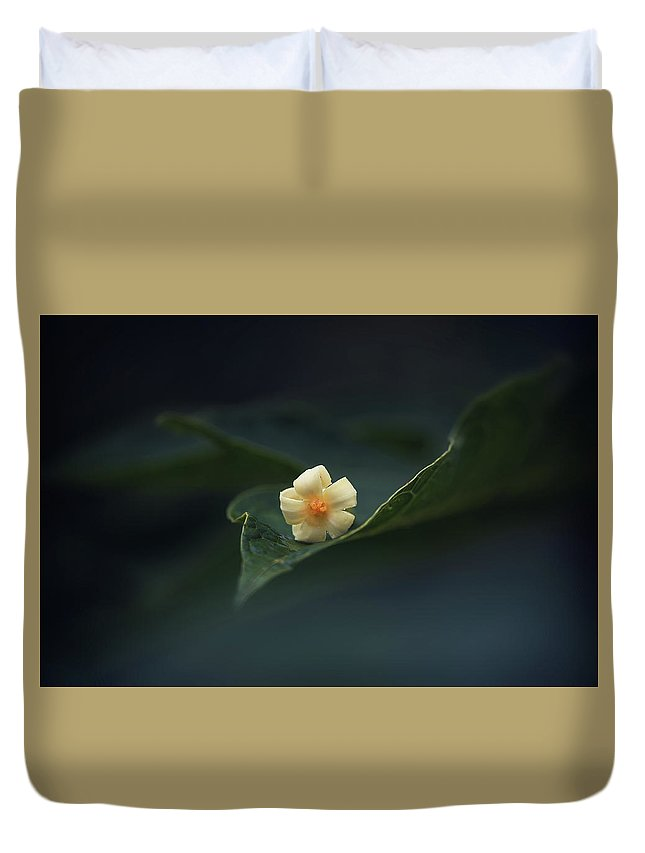 Papaya Duvet Cover featuring the photograph Papaya Flower On Leaf by Johanneke Kroesbergen-Kamps