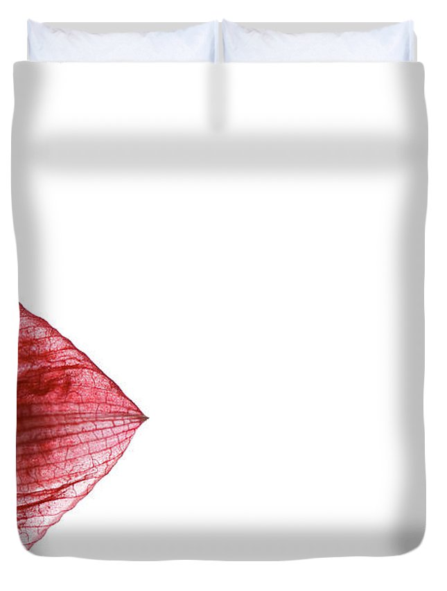 Lisa Knechtel Duvet Cover featuring the photograph Paper Thin by Lisa Knechtel
