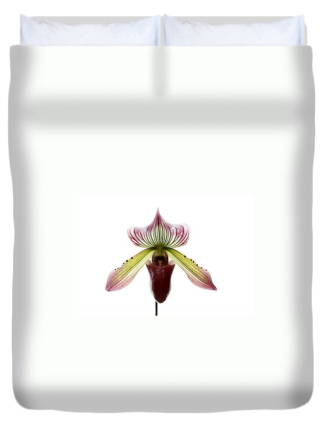 Orchid Duvet Cover featuring the photograph Paphiopedilum Lawrenceanum by Marilyn Hunt