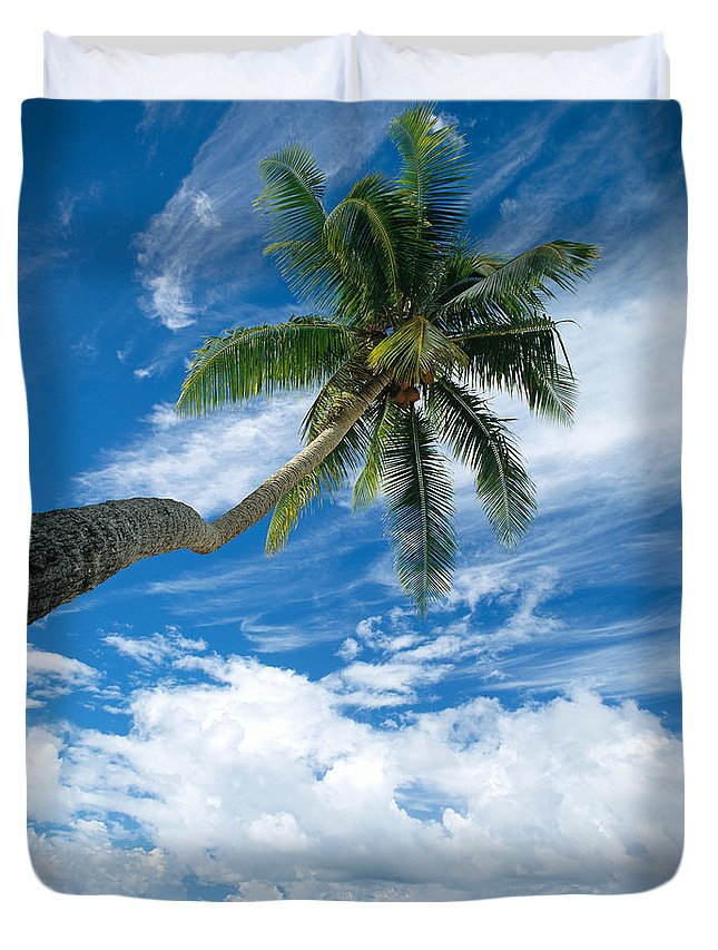 Bark Duvet Cover featuring the photograph Paradise by Mitch Warner - Printscapes