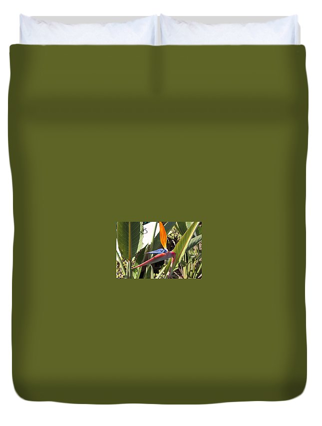 Flowers Duvet Cover featuring the photograph Paradise by Patrick Frei
